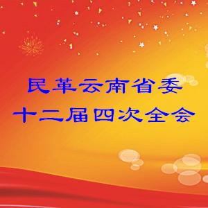 一文读懂:2018年民革省委常委会工作报告